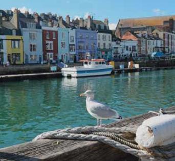 Sprachreise Weymouth